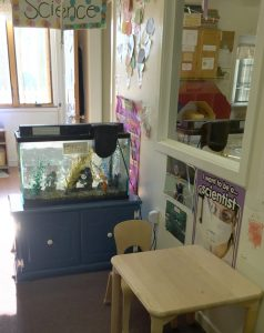 preschool-science-area